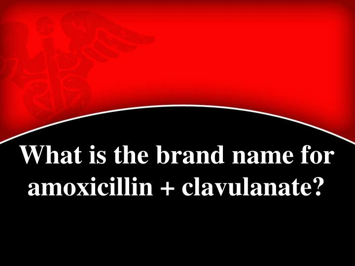 What is the brand name for amoxicillin + clavulanate?