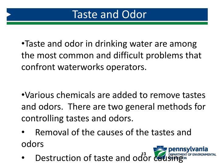 Taste and Odor