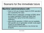 scenario for the immediate future