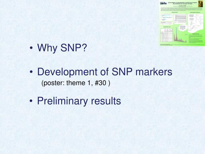 Why SNP?