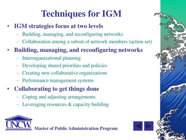 Techniques for IGM
