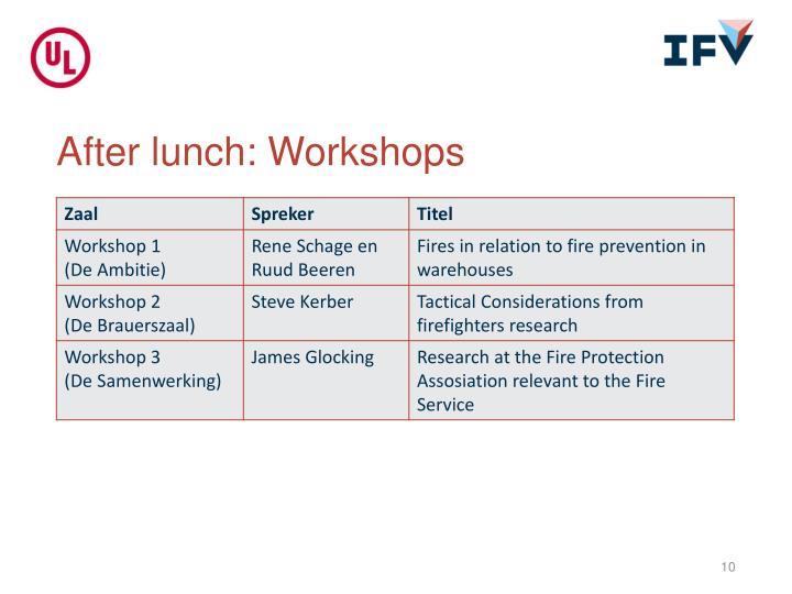 After lunch: Workshops