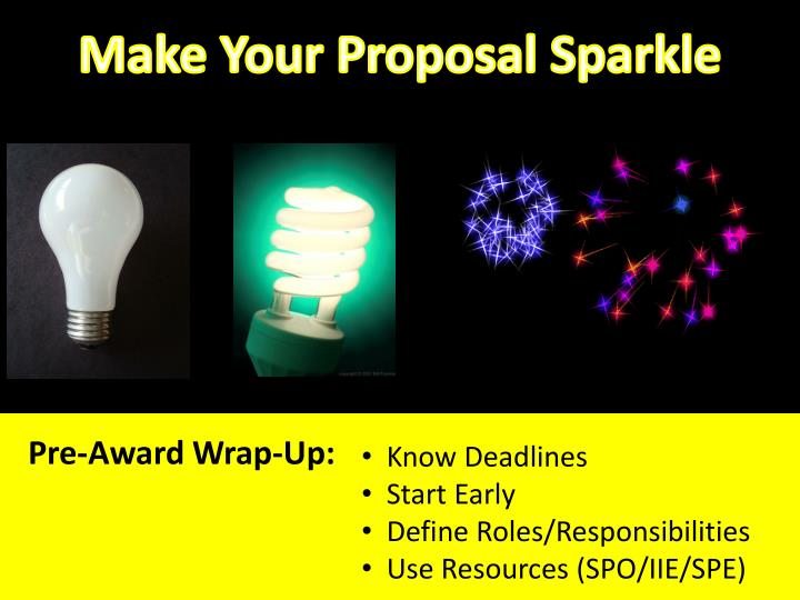 Make Your Proposal Sparkle