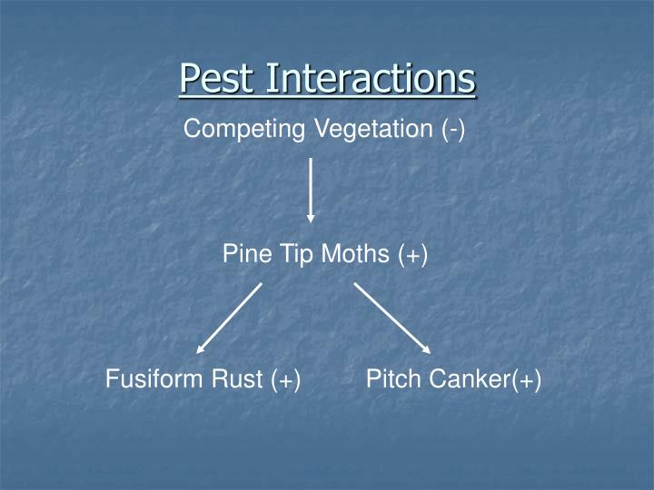 Pest Interactions