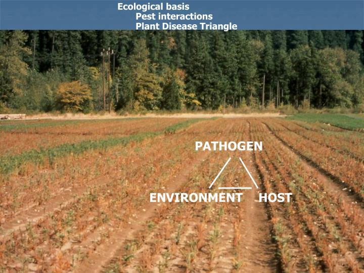 Ecological basis