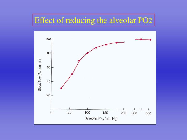 Effect of reducing the alveolar PO
