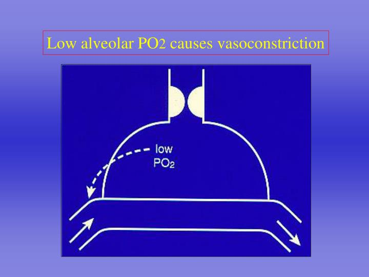 Low alveolar PO