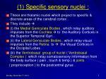 1 specific sensory nuclei