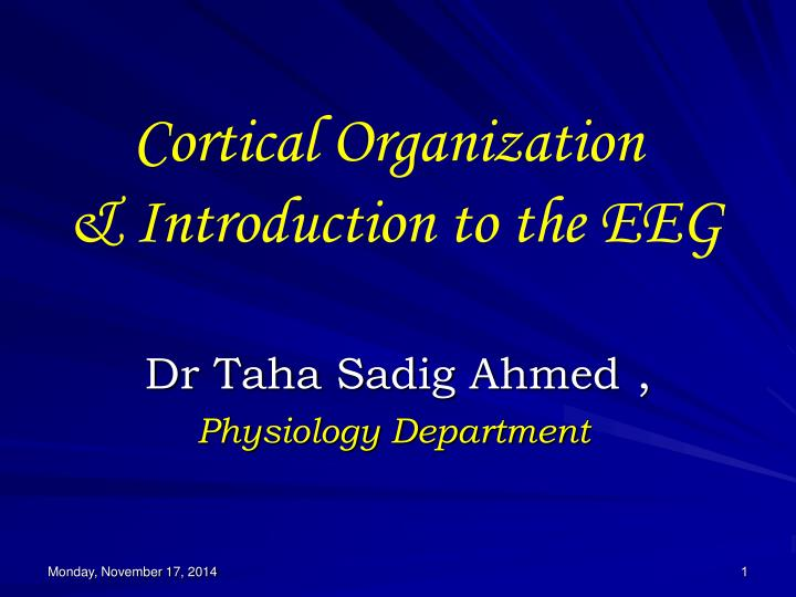 cortical organization introduction to the eeg