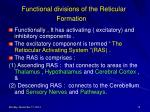 functional divisions of the reticular formation