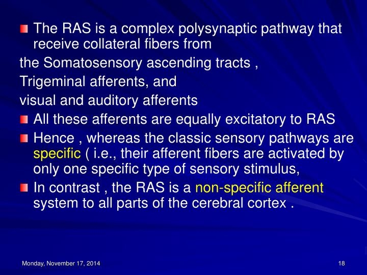 The RAS is a complex polysynaptic pathway that receive collateral fibers from
