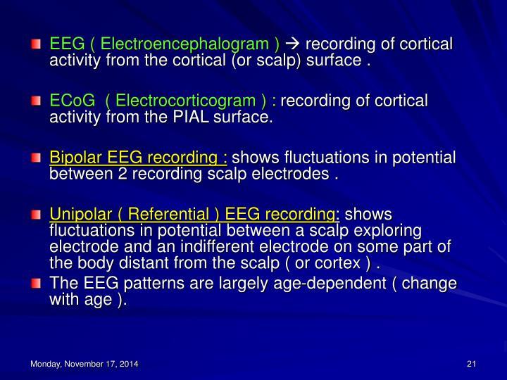 EEG ( Electroencephalogram )