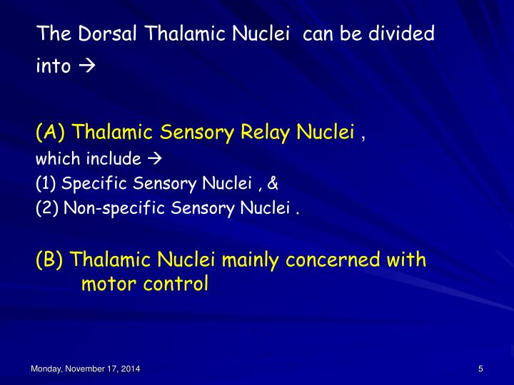 The Dorsal Thalamic Nuclei  can be divided