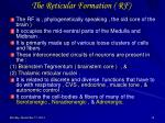 the reticular formation rf1