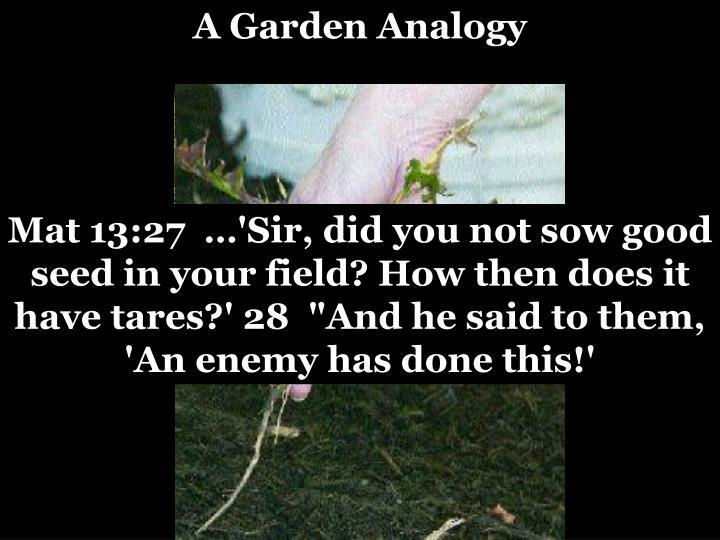 A Garden Analogy