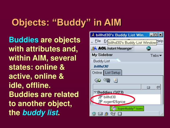 "Objects: ""Buddy"" in AIM"