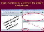 user environment 2 views of the buddy chat window