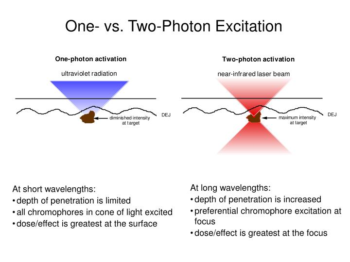 One- vs. Two-Photon Excitation