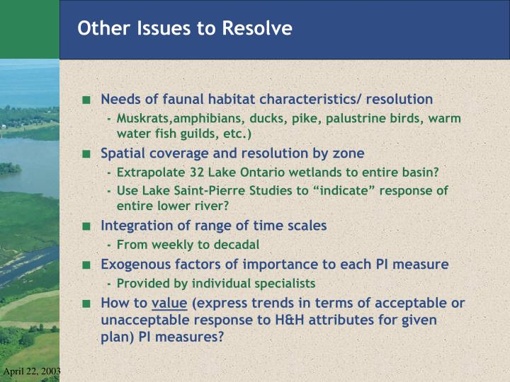 Other Issues to Resolve