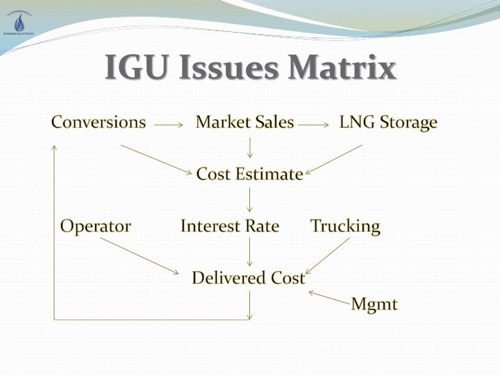 IGU Issues Matrix