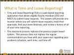what is time and leave reporting