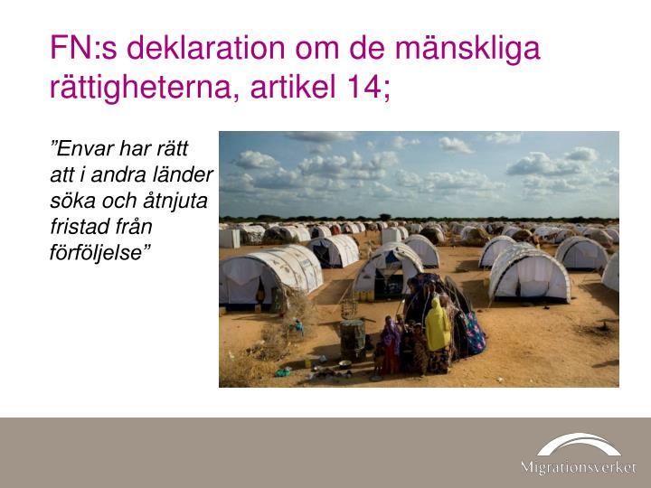 FN:s deklaration om de mänskliga rättigheterna, artikel 14;