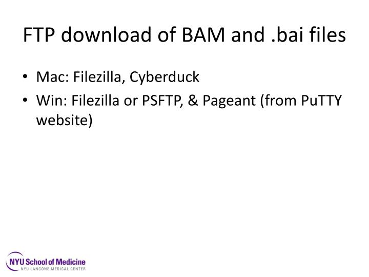 FTP download of BAM and .