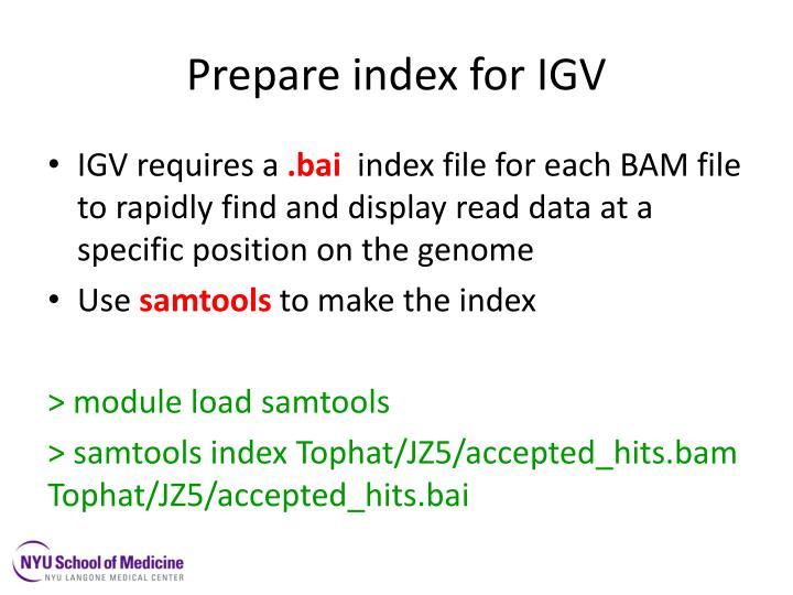 Prepare index for IGV