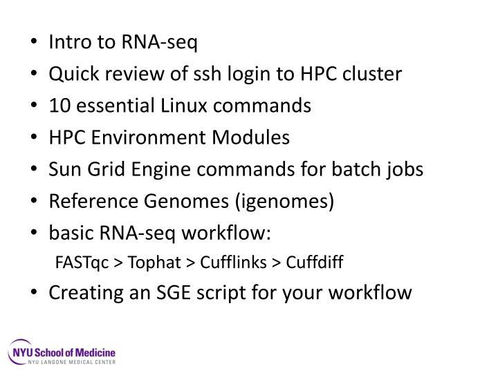 Intro to RNA-