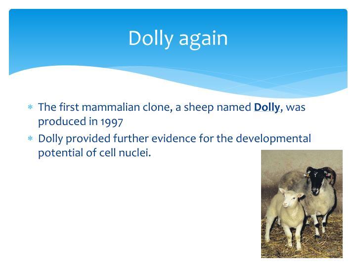 Dolly again