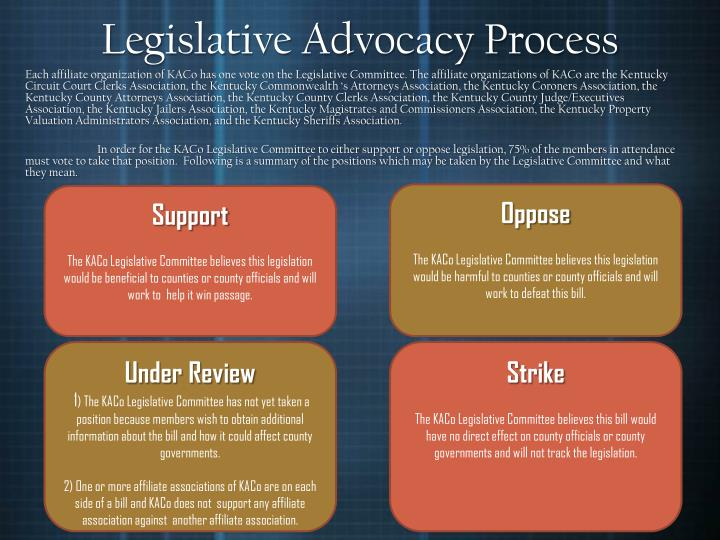 Legislative Advocacy Process