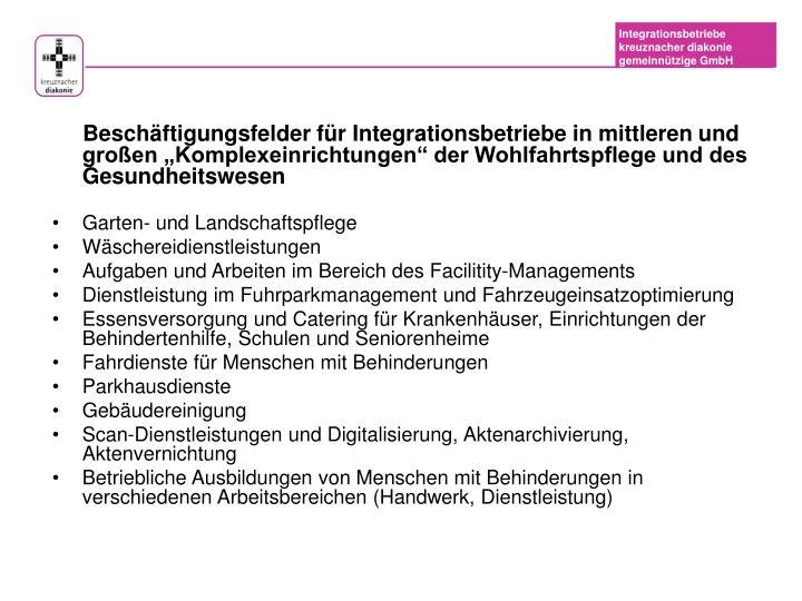 """Beschäftigungsfelder für Integrationsbetriebe in mittleren und großen """"Komplexeinrichtungen"""" der Wohlfahrtspflege und des Gesundheitswesen"""