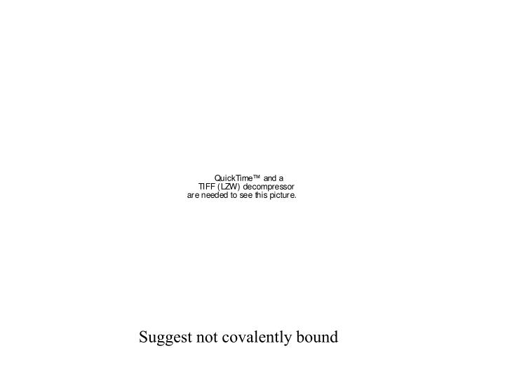 Suggest not covalently bound