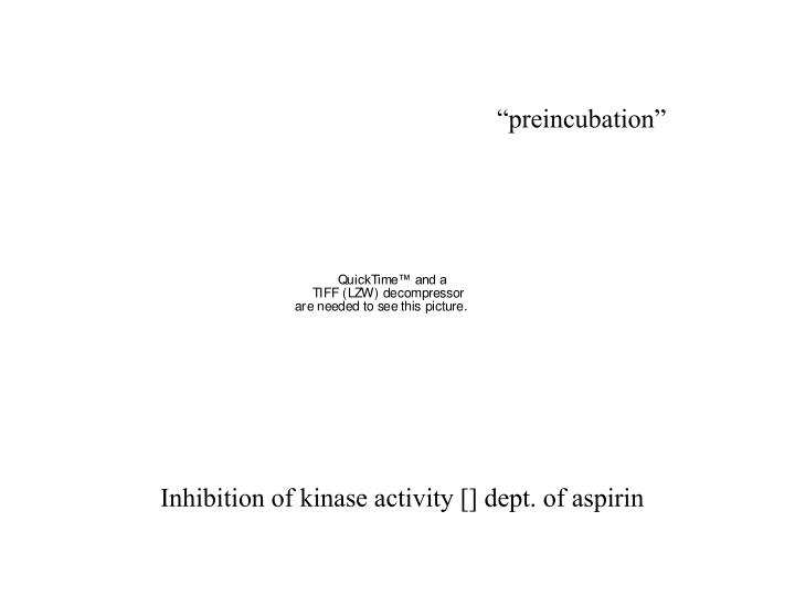 """""""preincubation"""""""
