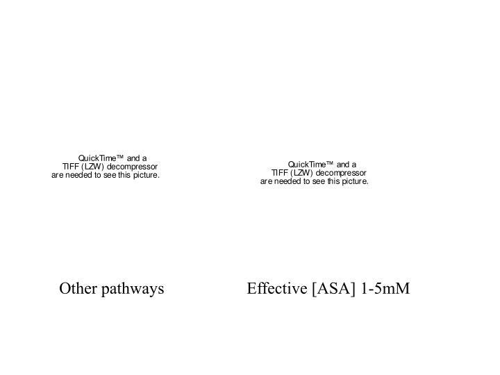 Other pathways