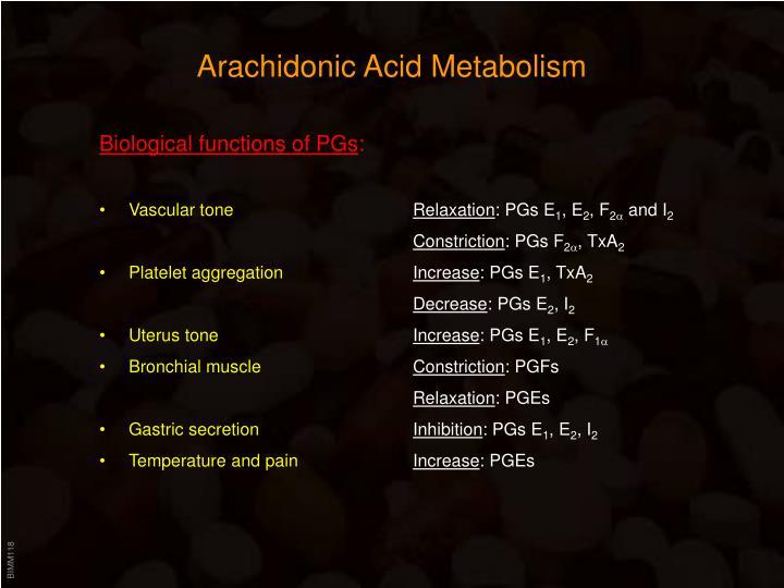 Arachidonic Acid Metabolism