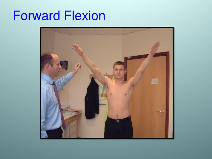Forward Flexion