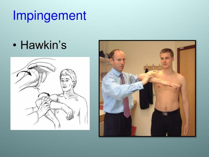 Hawkin's