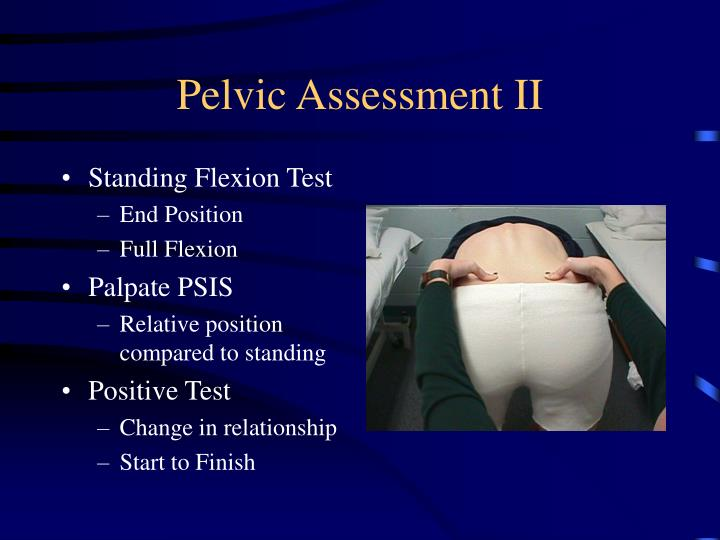 Pelvic Assessment II