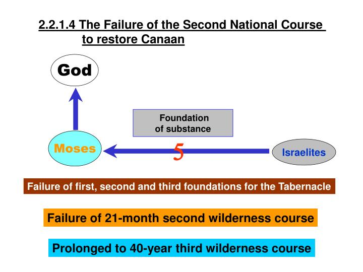 2.2.1.4 The Failure of the Second National Course