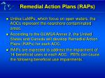 remedial action plans raps