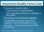 important deadly force case