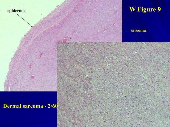 W Figure 9
