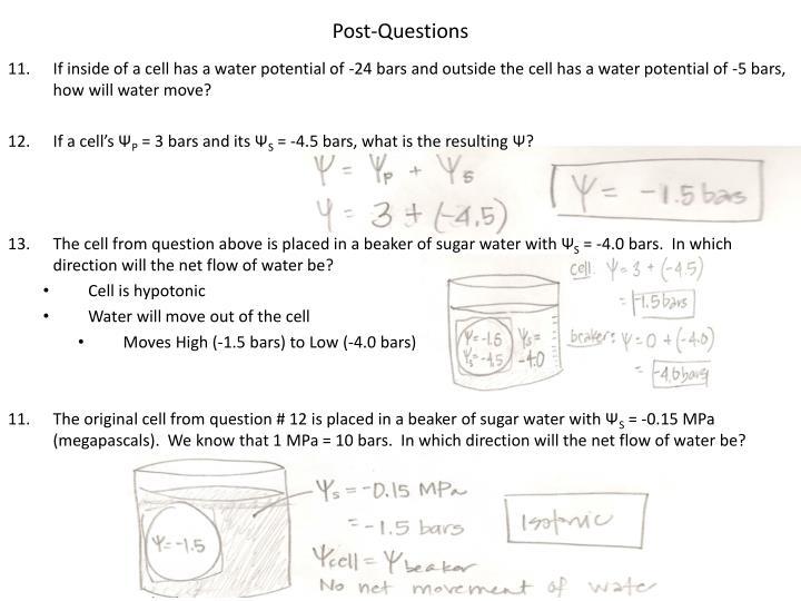Post-Questions