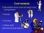 cost analysis1
