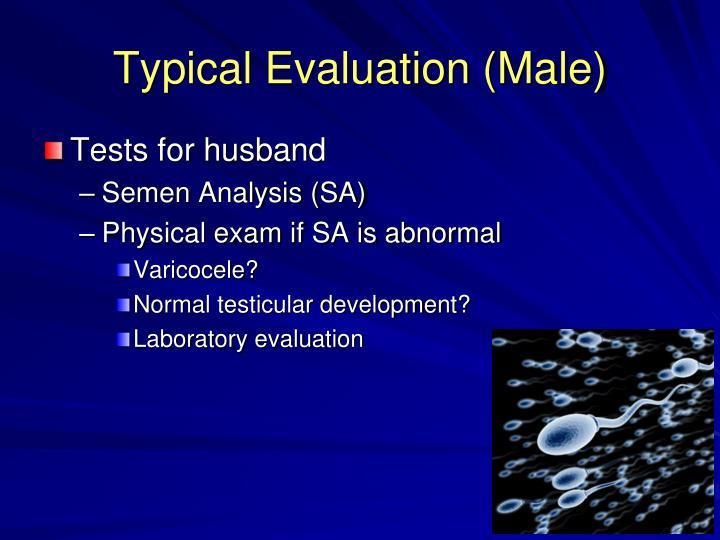 Typical Evaluation (Male)