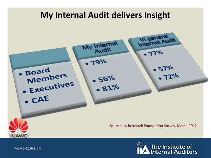 My Internal Audit delivers Insight