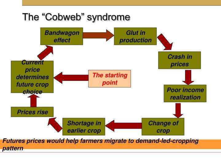"The ""Cobweb"" syndrome"