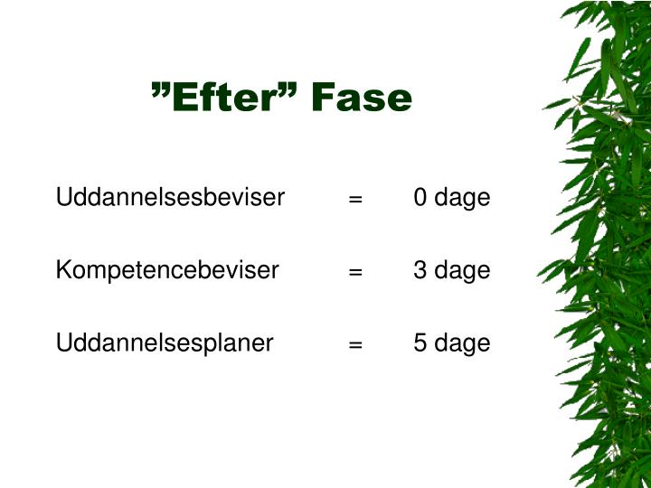 """""""Efter"""" Fase"""