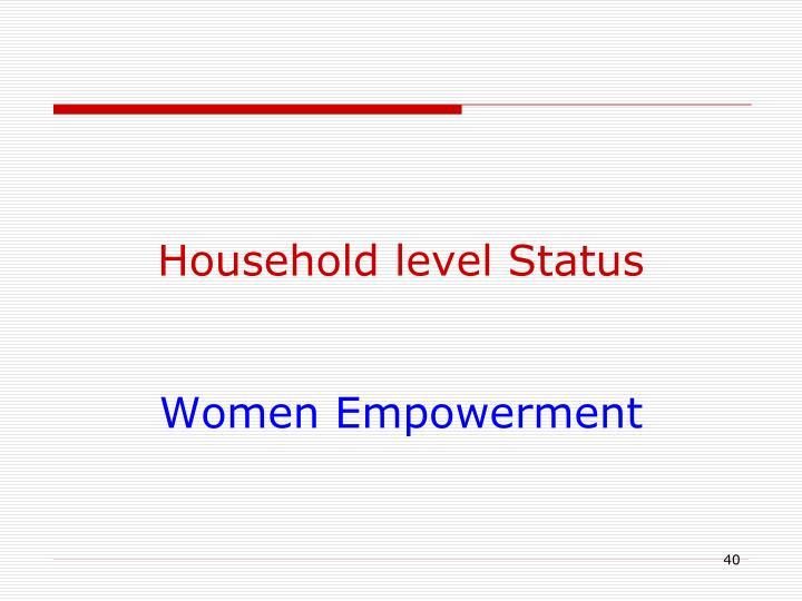 Household level Status